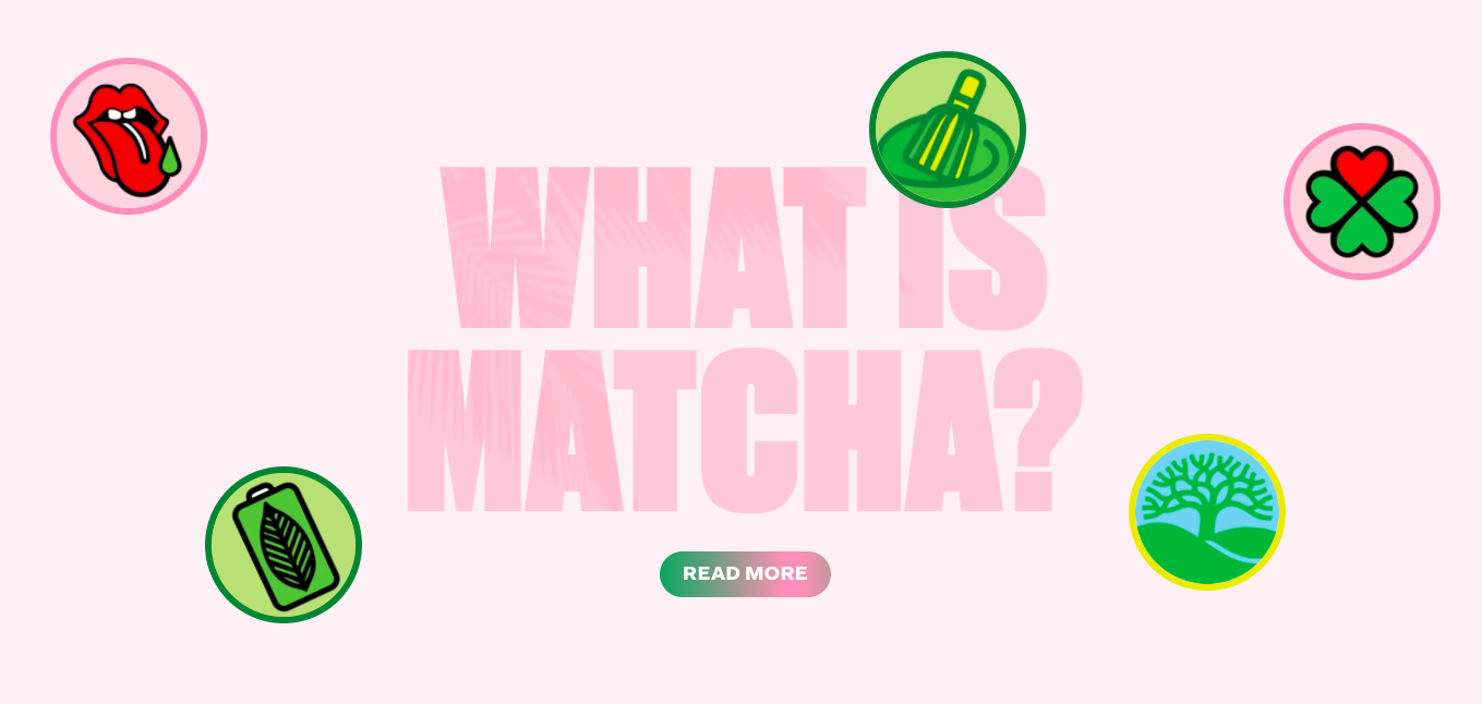 Cha Cha Matcha what is matcha