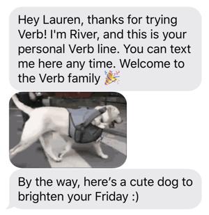 Verb SMS Dog-1