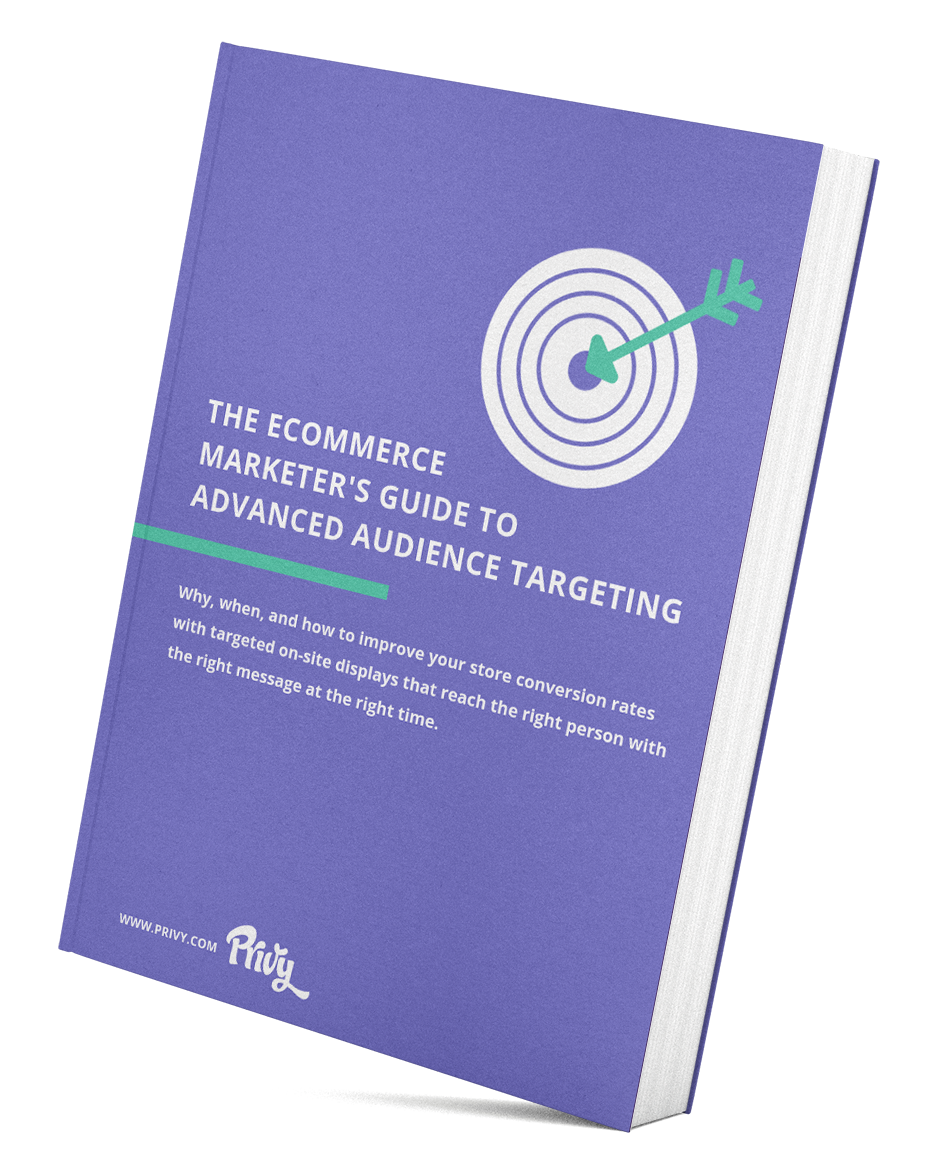 Audience Targeting Guide Book Mock Up